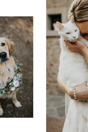We love! Las mascotas en la boda y estas 8 ideas adorables para incluirlas.