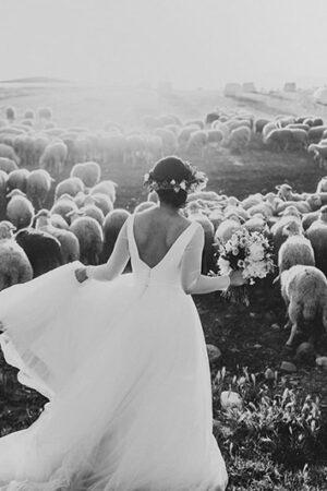 Bienvenidos a la jungla de la fotografía de bodas.